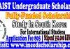 KAIST Undergraduate Scholarship